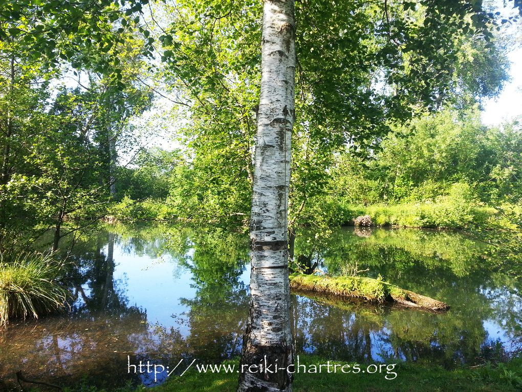 Un petit coin de Paradis en Eure et Loir au bord de l'eau, avec le Reiki