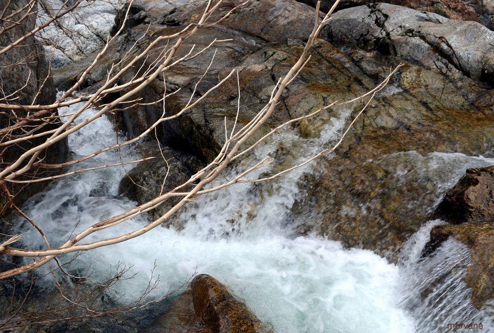 Inlassable, l'eau court et sa force est telle qu'elle entaille d'énormes roches.