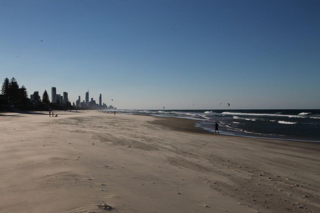 Enjoying the Gold Coast