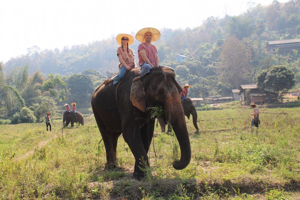 Sur le dos de Dumbo