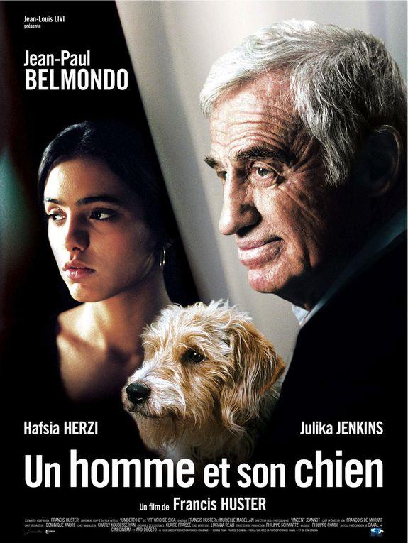 Des films qui ont du chiens !