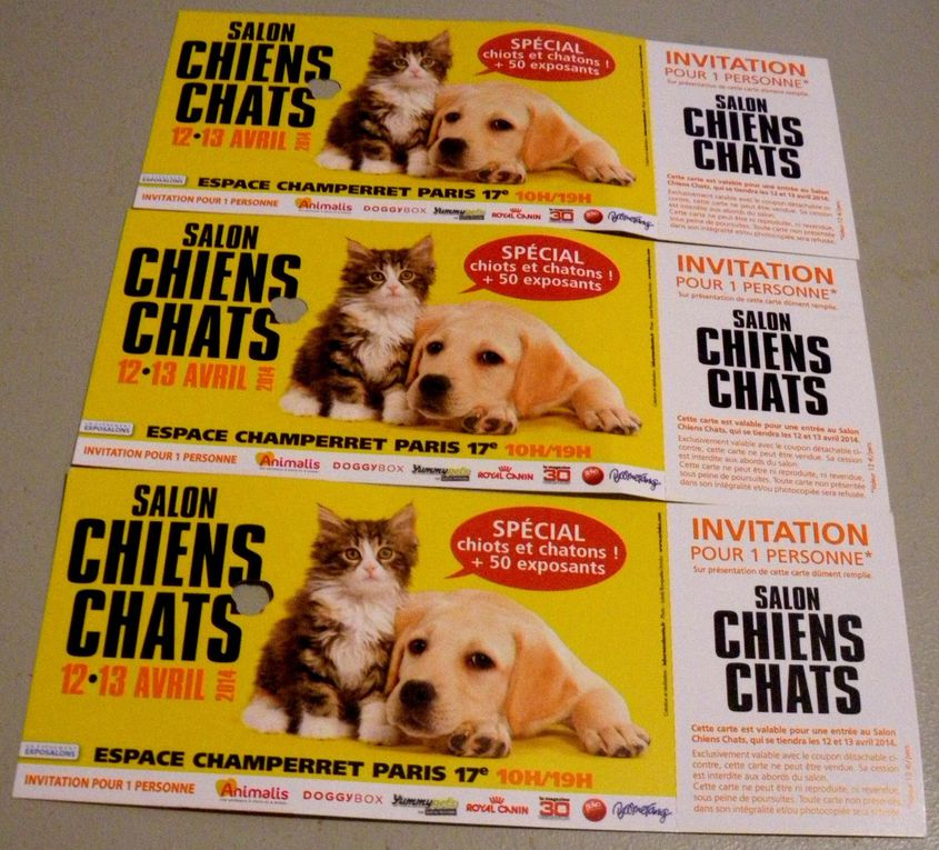 Salon chien chats 12 et 13 avril 2014 trucs de wouf for Salon des chiens