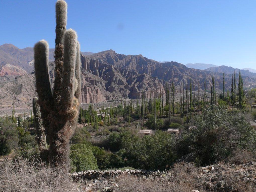 De Salta à la Quebrada de Humahuaca