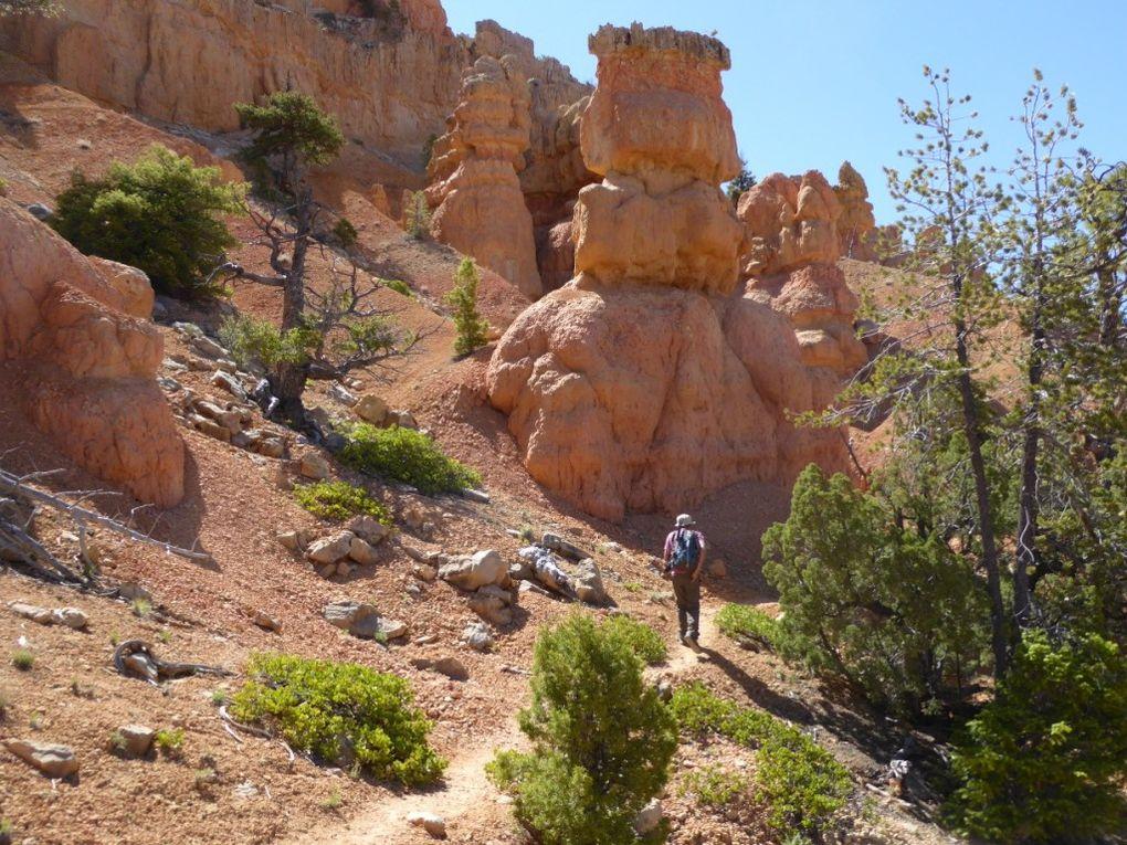 Randonnée dans Red Canyon