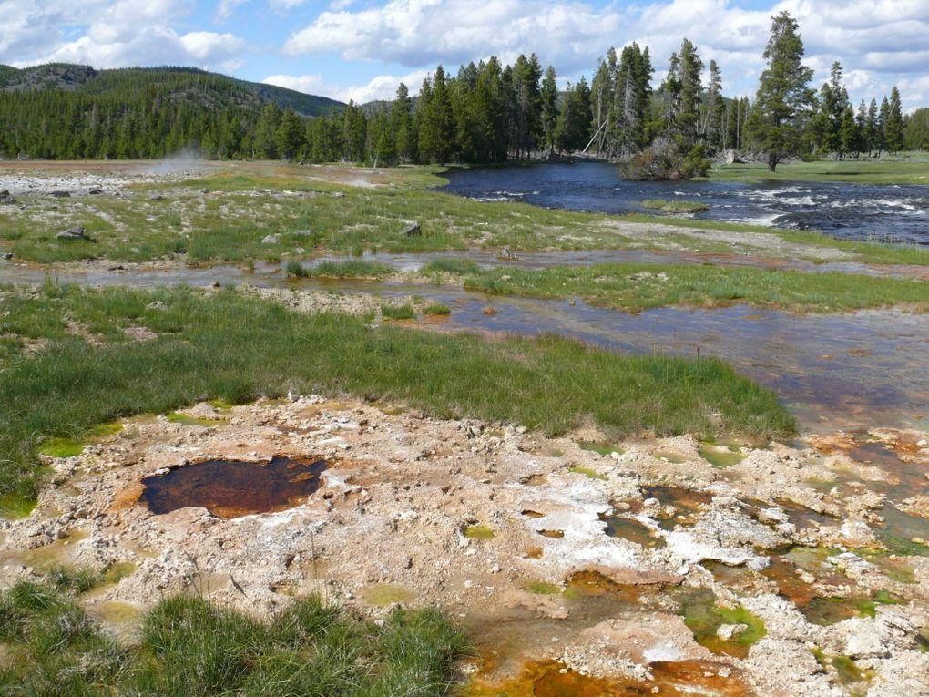 Yellowstone et Grand-Teton
