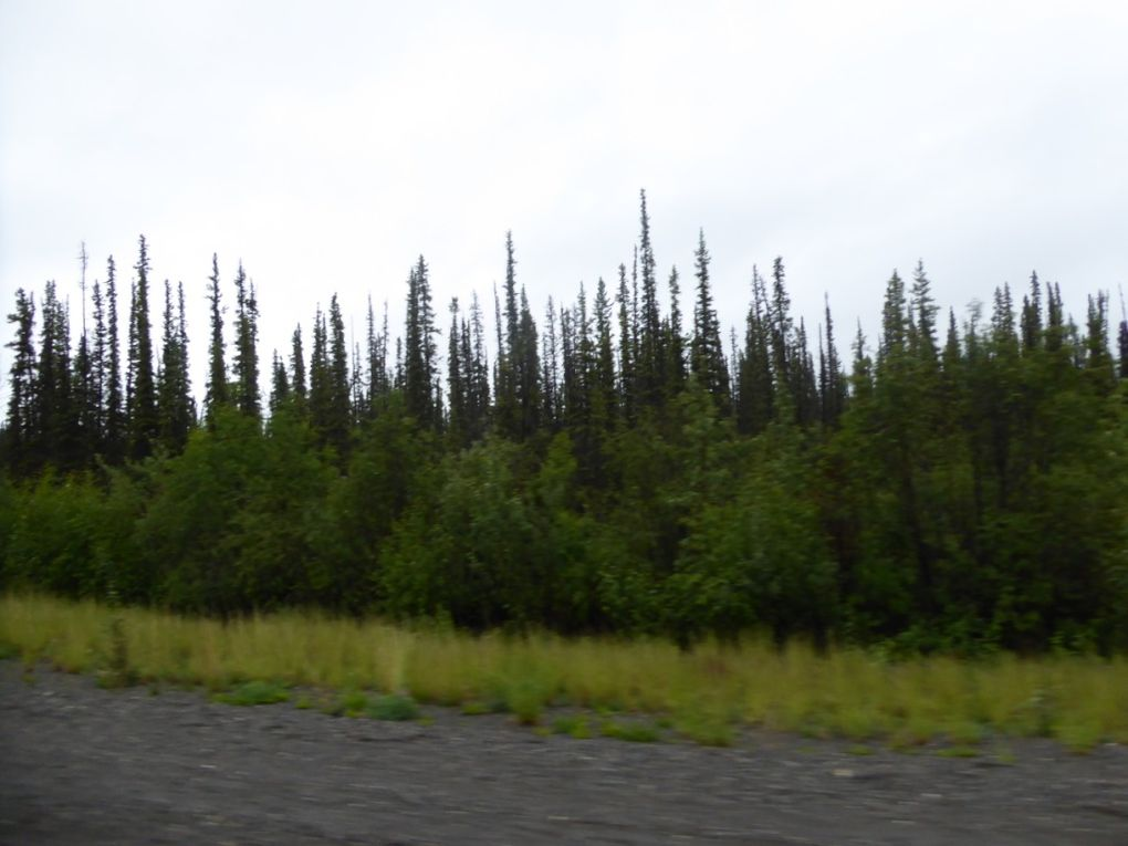 &quot&#x3B;On the road &quot&#x3B;pour l'Alaska