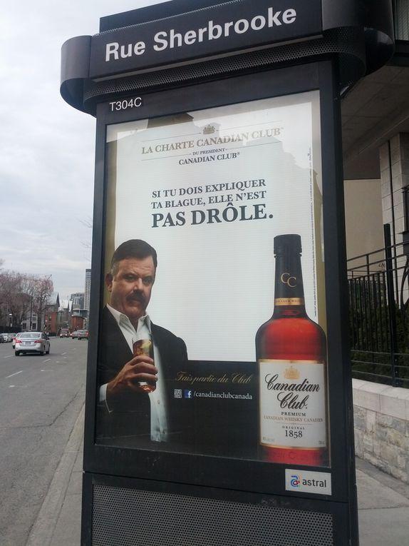 Les publicités