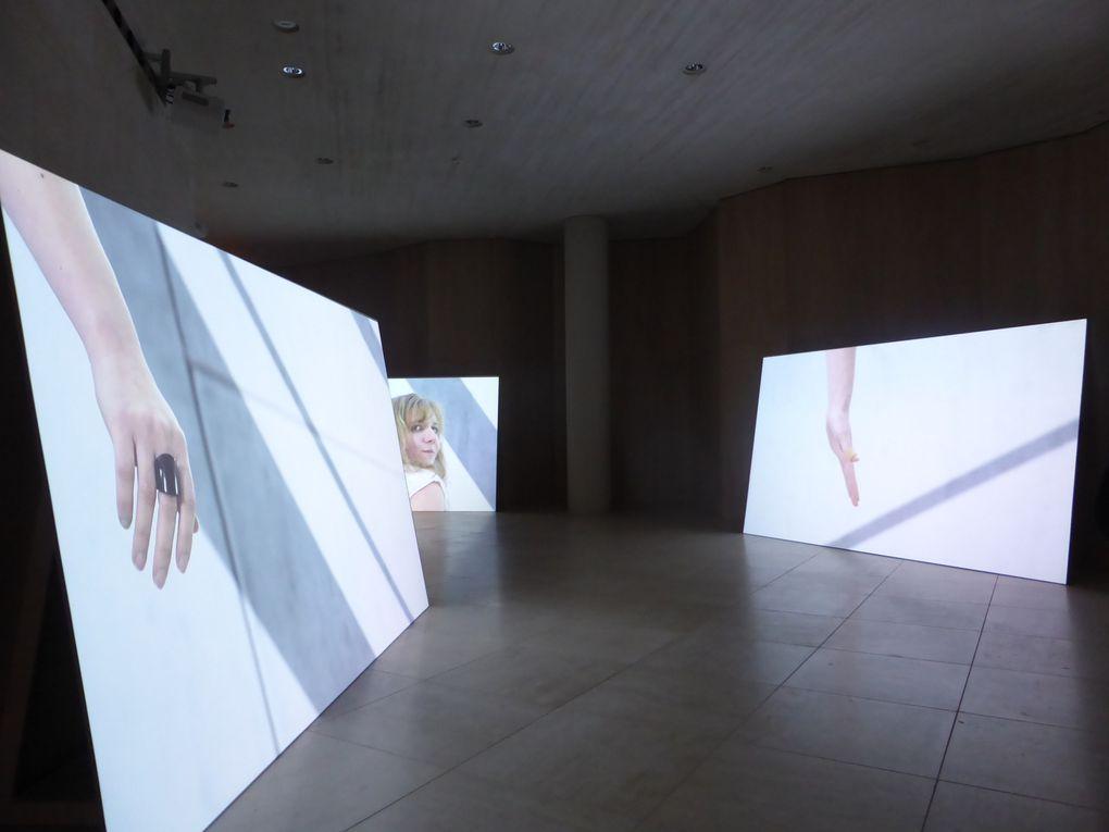 Exposition S'inventer autrement de Sylvie Blocher, musée d'Art Moderne de Luxembourg © photographies Le curieux des arts Gilles Kraemer, novembre 2014