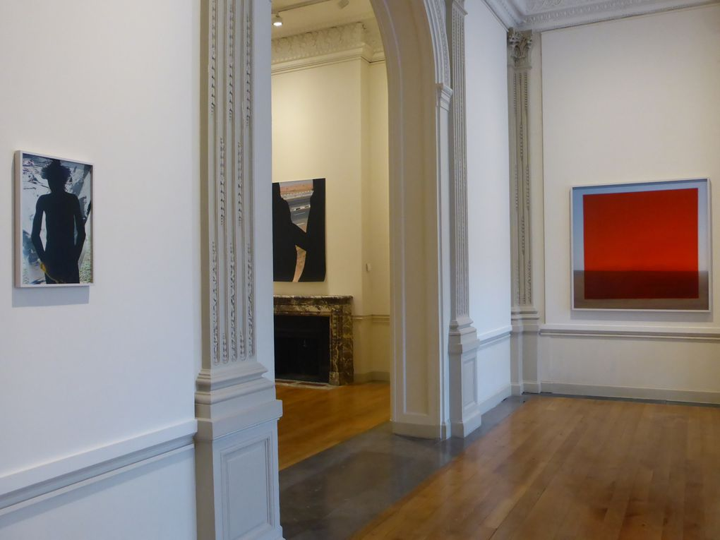 Vues de l'exposition Viviane Sassen│UMBRA, Atelier Néerlandais, Paris © Le Curieux des arts Gilles Kraemer, présentation presse, 10 septembre 2015