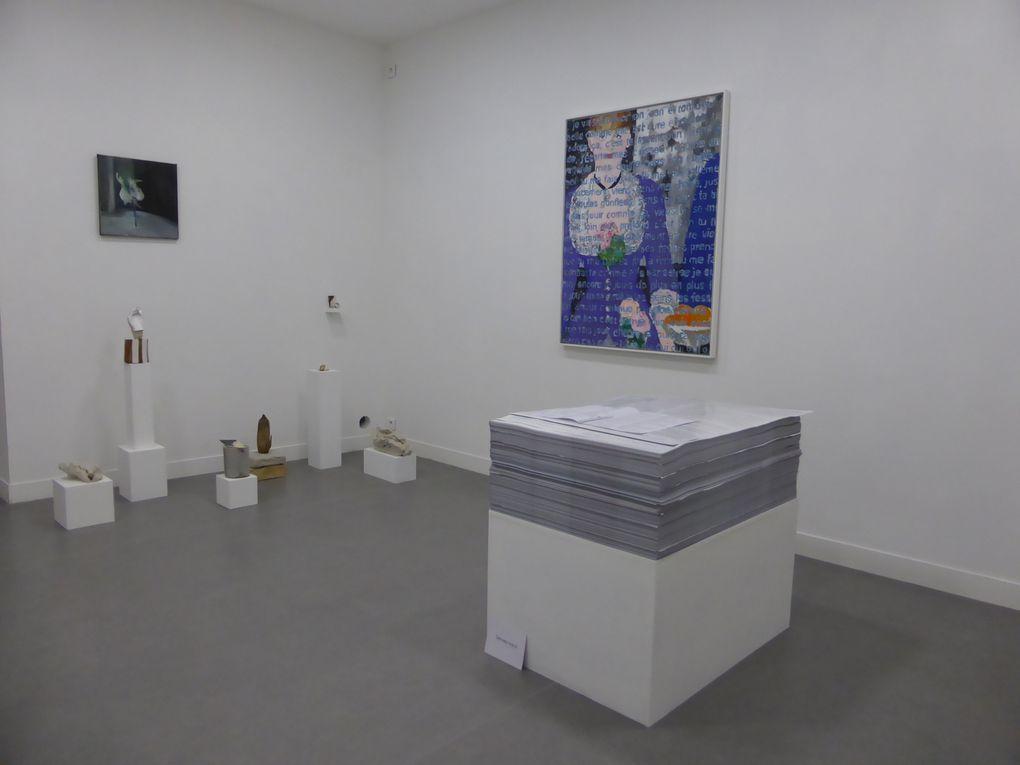 Vues de l'exposition Les Fragments de l'amour, La Traverse Centre d'art contemporain d'Alfortville © Le Curieux des arts Gilles Kraemer, décembre 2015