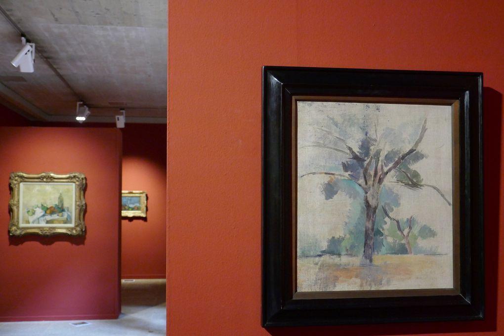 © Le Curieux des arts Gilles Kraemer, visite presse de l'exposition Cézanne. Le Chant de la terre, Fondation Pierre Gianadda, Martigny, juin 2017.