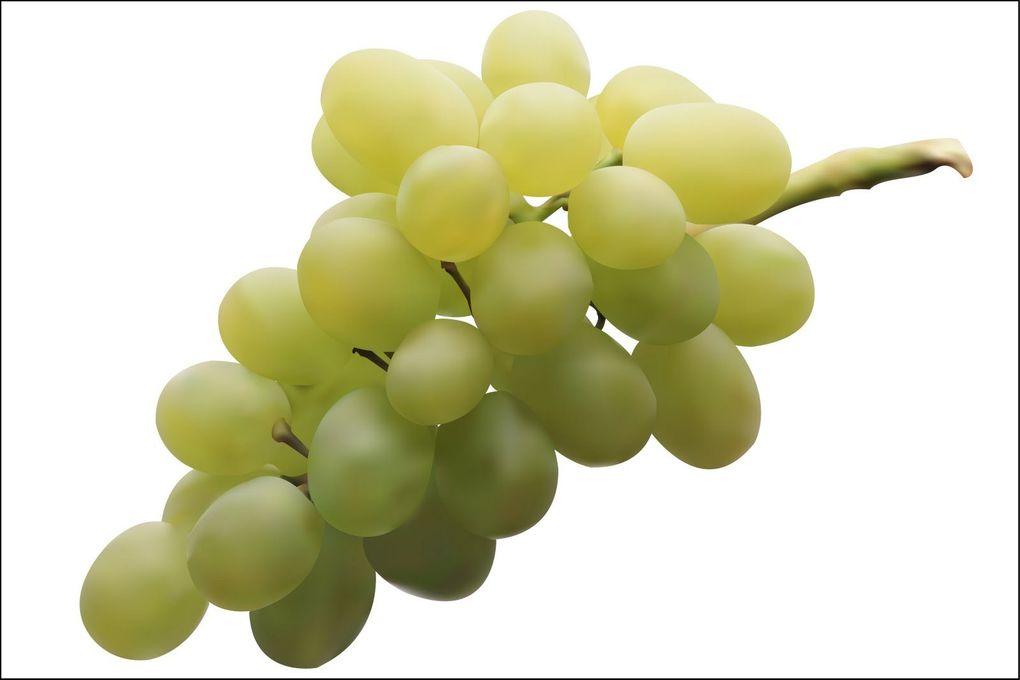El racimo de uvas más caro del mundo se ha vendido por 7.000 euros en Japón.