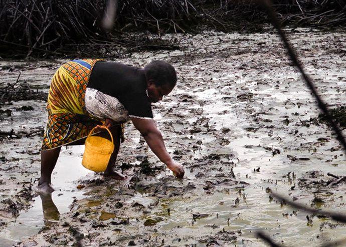 El delta del río Níger también es mi delta: la devastación del delta del Níger por las multinacionales petroleras, con la complicidad de los sucesivos gobiernos de Nigeria.- El Muni.