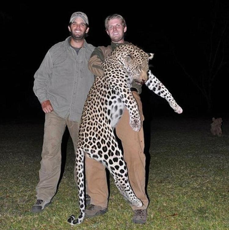 Los Trump, Donald Jr y Eric diezmando la fauna salvaje africana protegida en Zimbabwe.- El Muni.