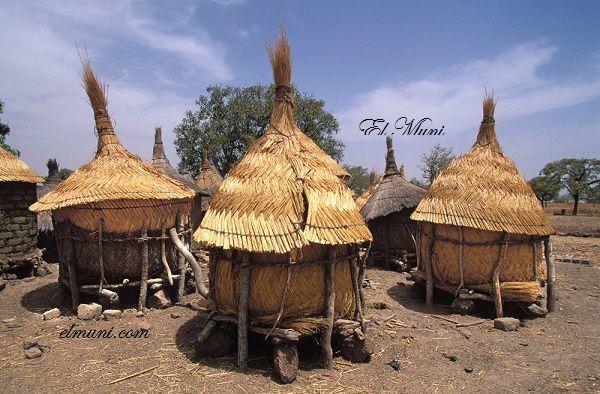 Imágenes de la región de Sédhiou, Casamance, Senegal.- El Muni.