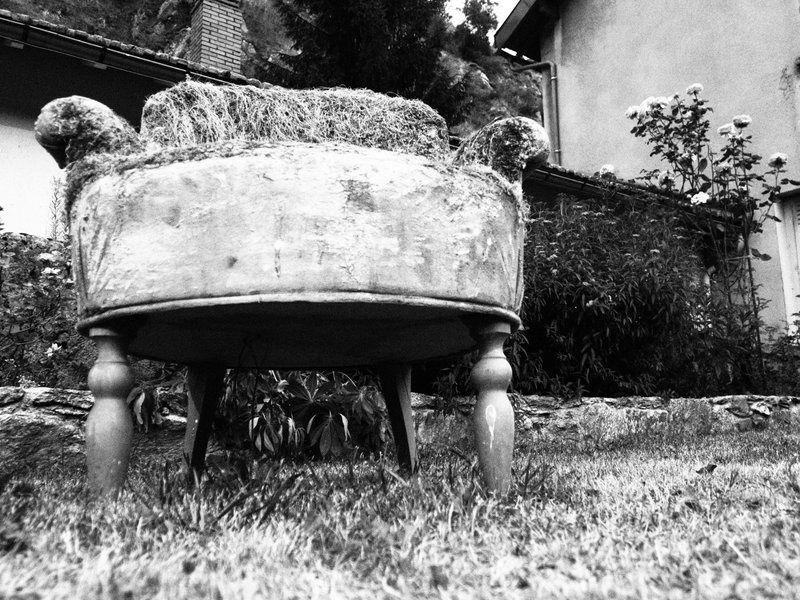 Un fauteuil minéral et végétal, qui m'a inspiré !