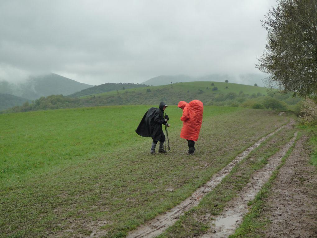 d'Aire-sur-l'Adour à Logrono: 16 jours sous la pluie quotidienne...