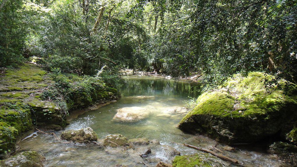 Gorges de la Nesque, depuis Monieux