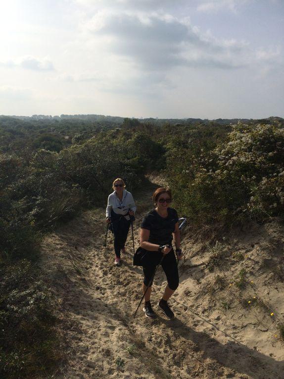 Entre Dunes et mer le samedi 10 octobre