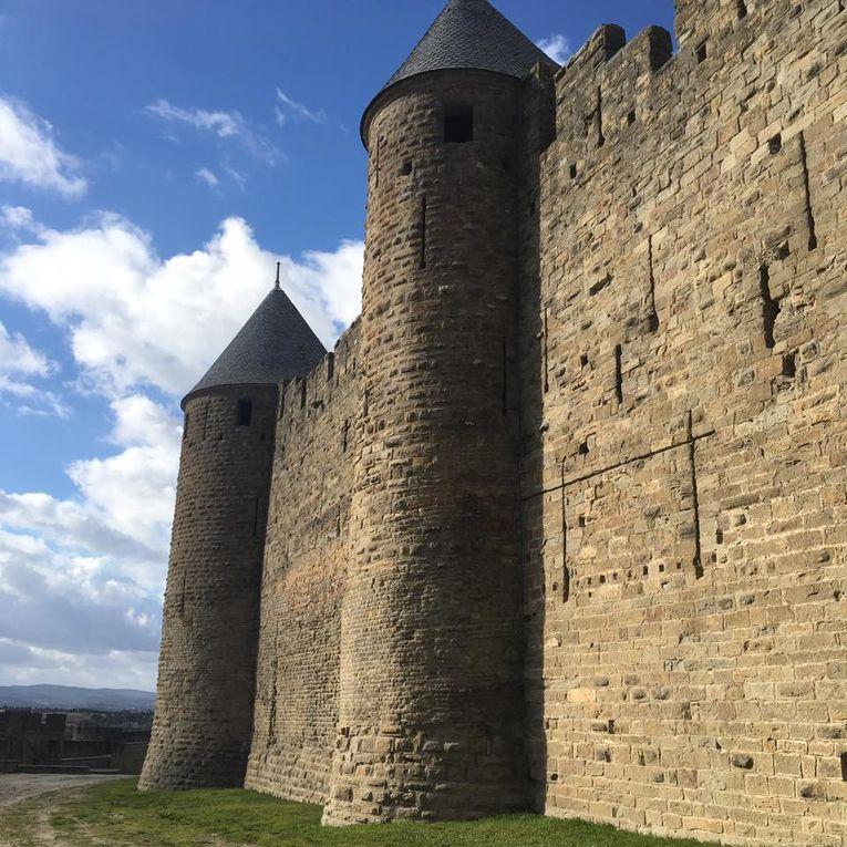 Carcassonne + Découverte d'un magasin de Thé