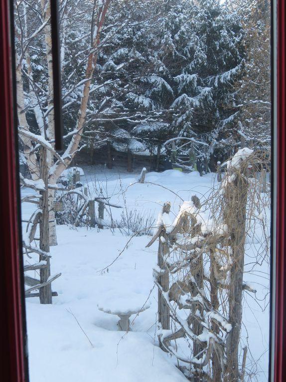 Des dizaine de photos de mes fenêtres !