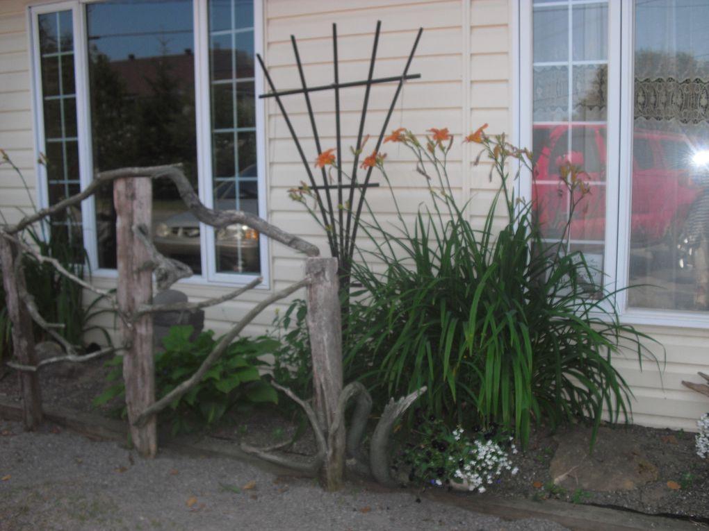 La rocaille avant le jardin Zen, le bouleau intégré dans le jardin et  le jardin sous  des angles différents.