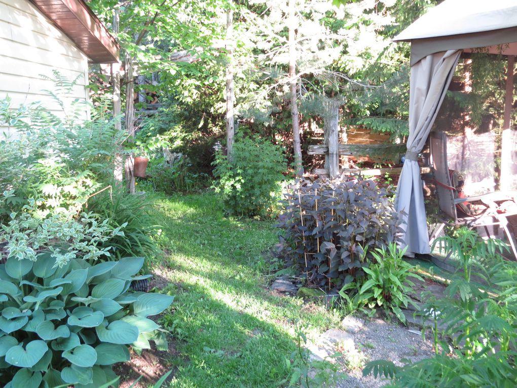 Mes jardins !