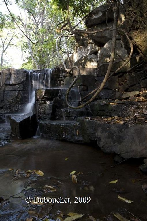 Iloba river area