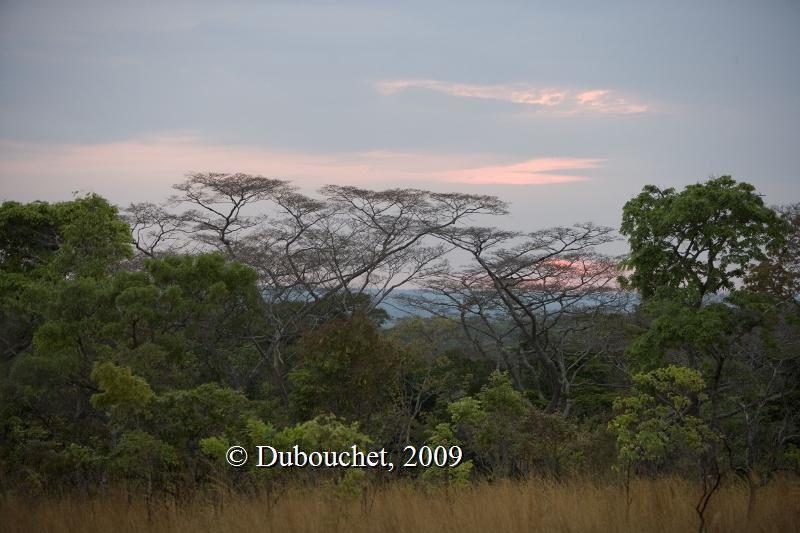 Mlele escarpment area