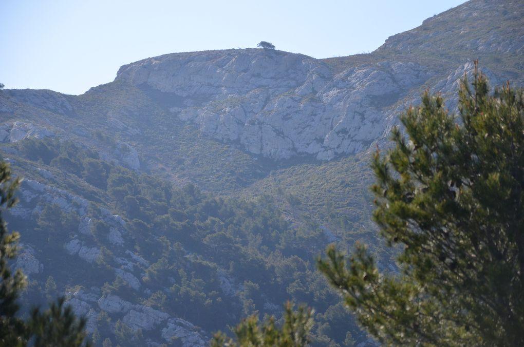 Marseille - Photos : Marseille vue des collines