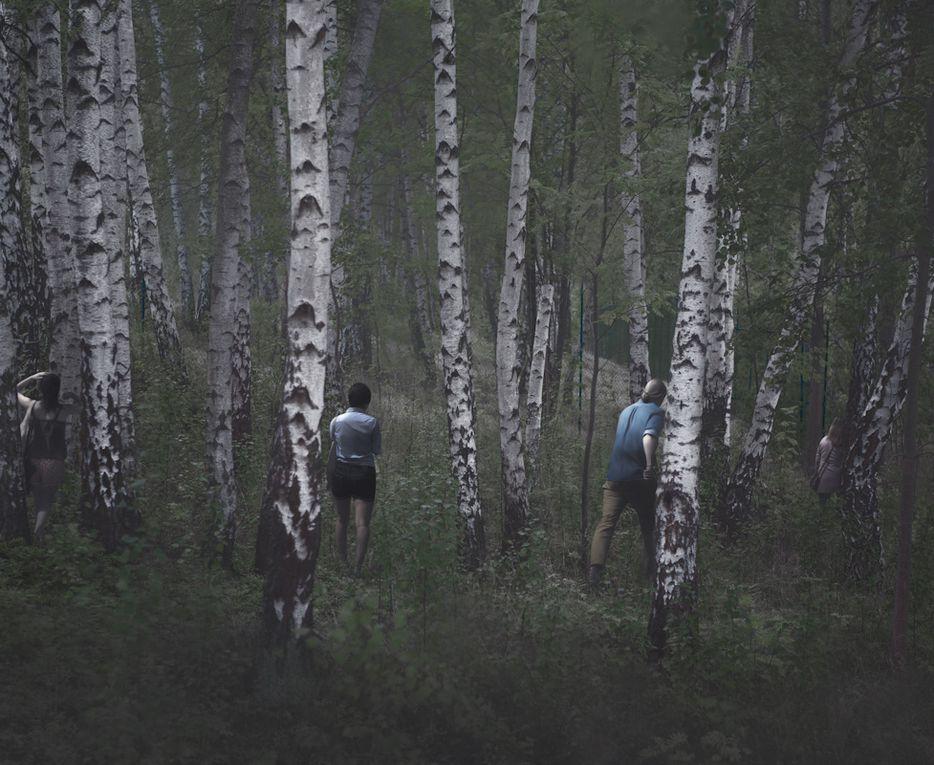 "Série ""Events in nature"" de Kristoffer Axèn"