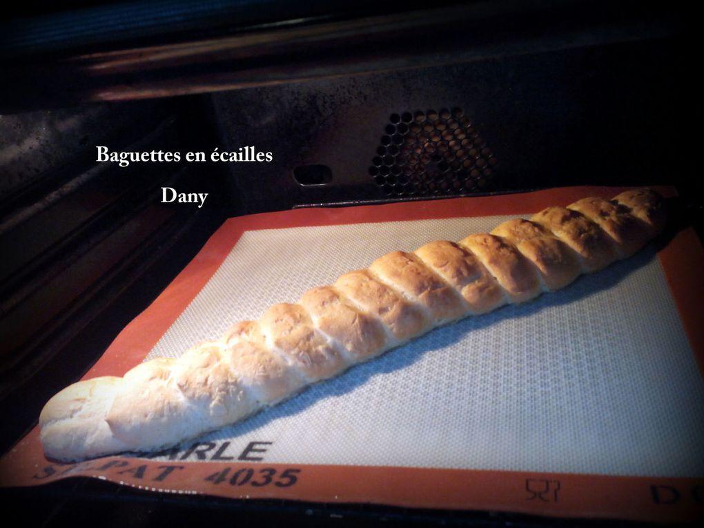 Baguettes en écailles- Dany (Silpat)