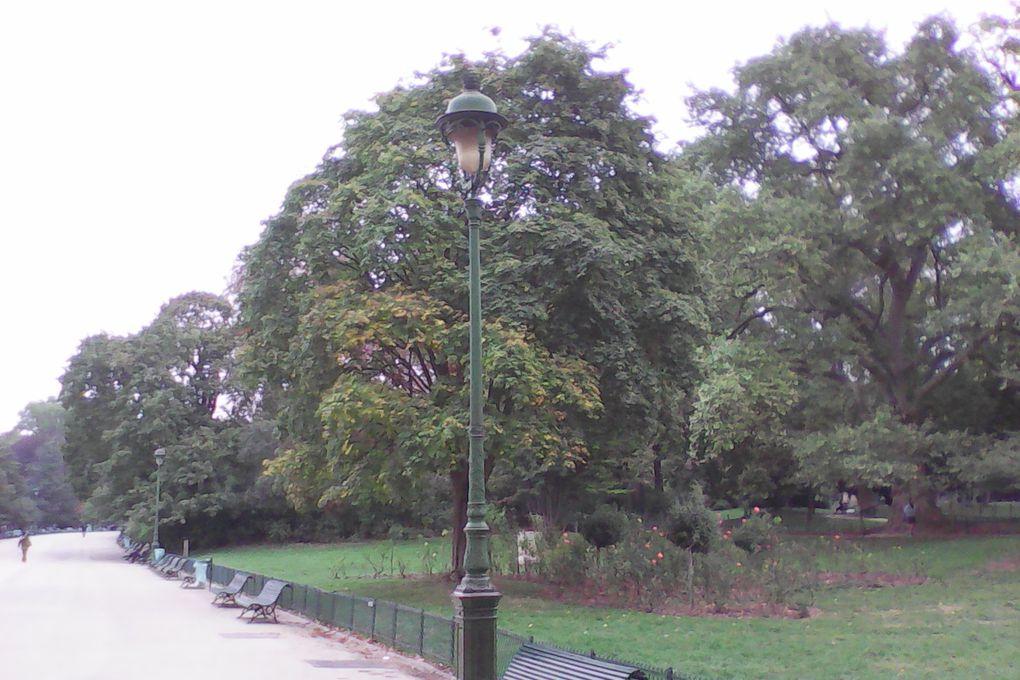 Couleurs du parc Monceau en octobre