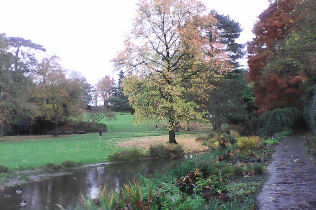 Le parc de Procé à Nantes en automne