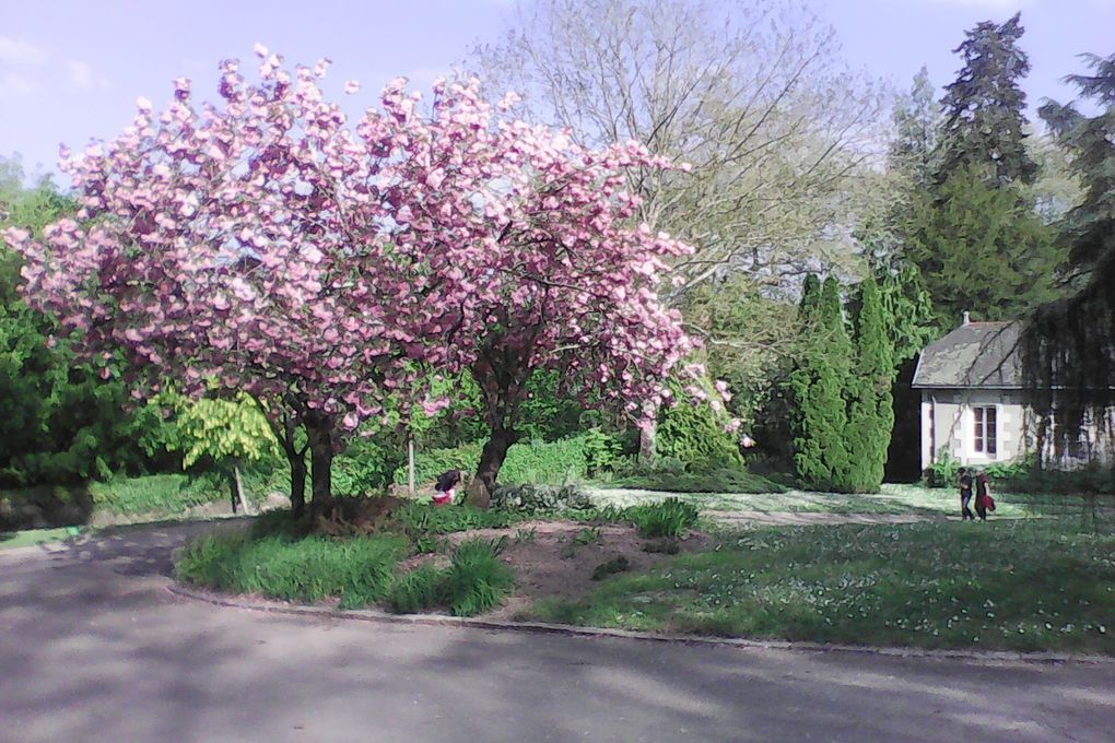 La Sèvre Nantaise au printemps