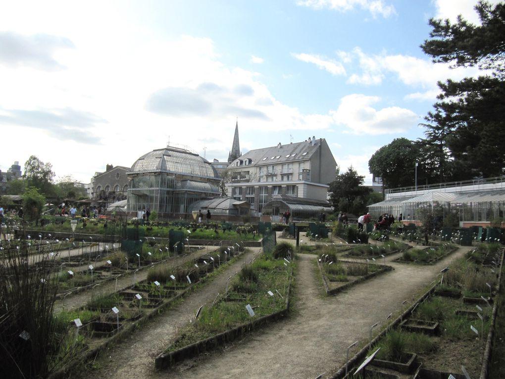 Le jardin des plantes de Nantes au printemps