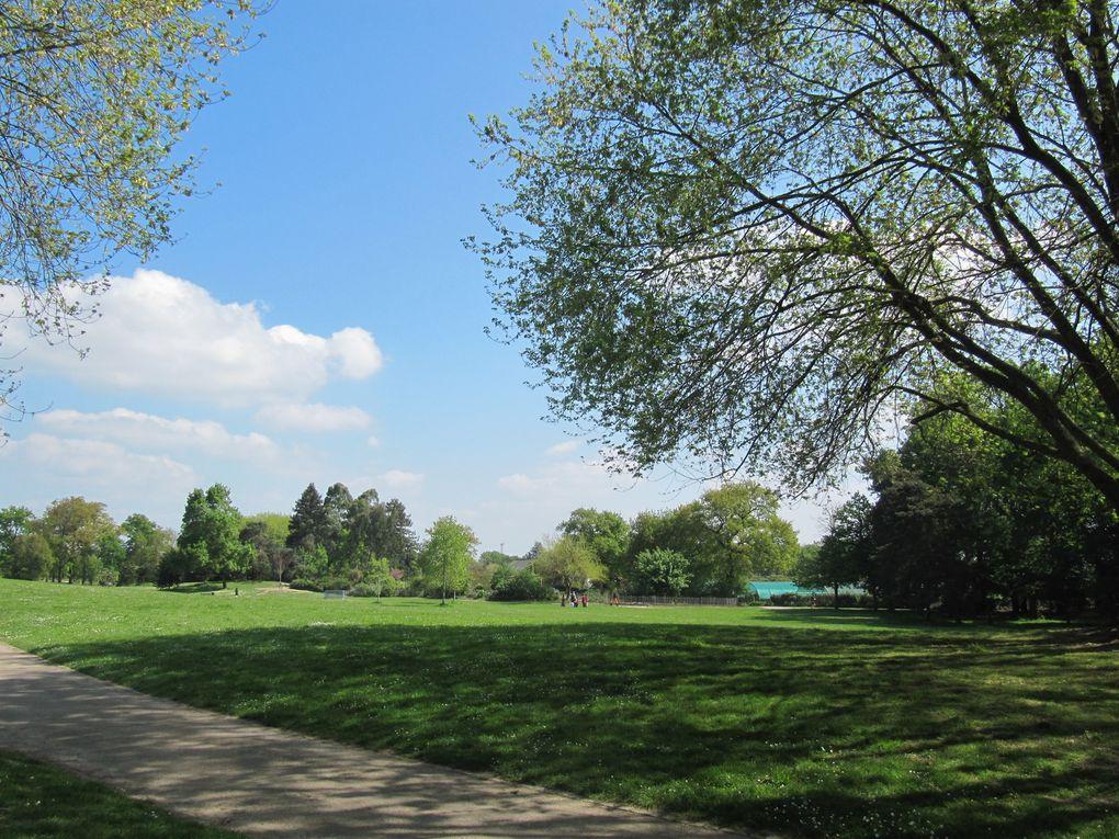 Le parc du Grand Blottereau