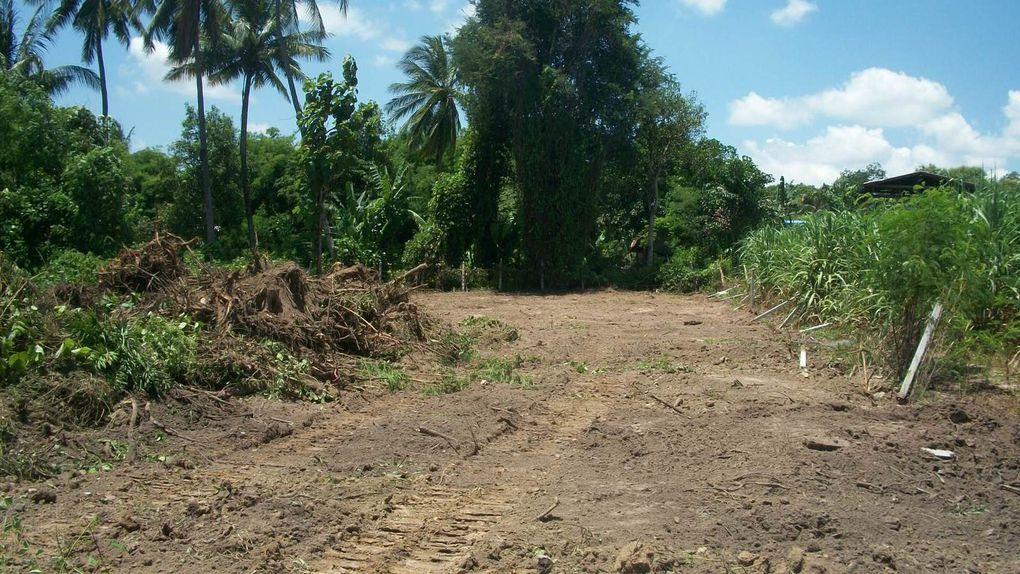 Projet de maison nettoyage du terrain
