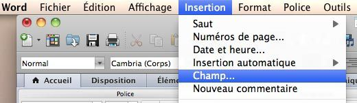 Insertion du champ INCLUDEPICTURE dans word pour un publipostage image