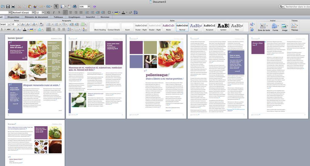Visualiser un nouveau document à partir d'un modèle word
