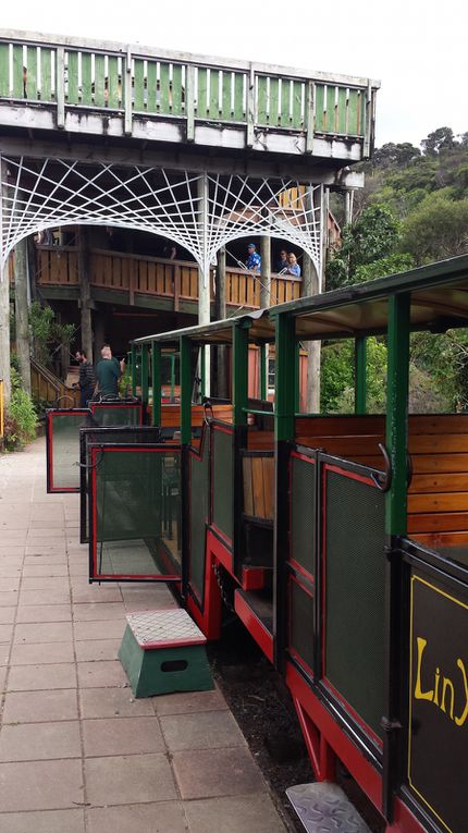 Jour 12 - Driving Creek Railway and Potteries - New Chums Beach