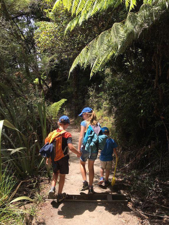 Randonnée en famille ~ Abel Tasman National Park ~ Nouvelle Zélande
