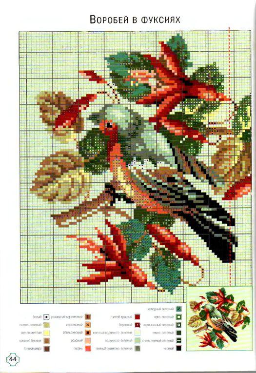 Grilles oiseaux 4...