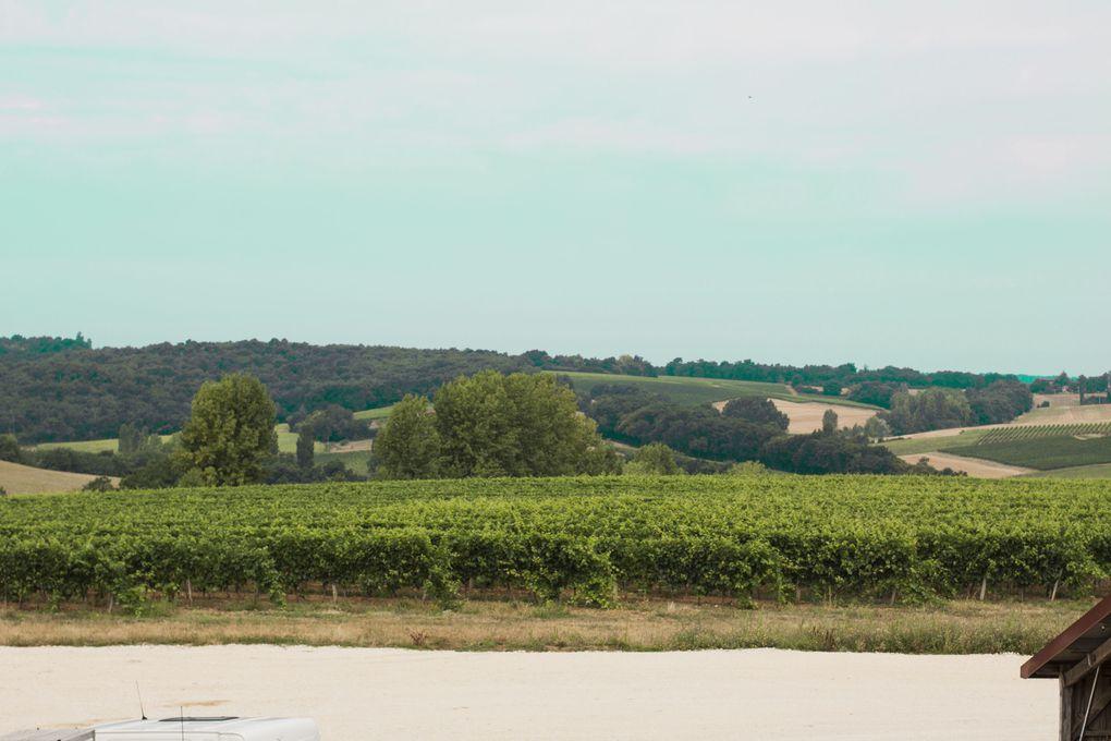 Côtes de Gascogne - Fraîchement Sud-Ouest