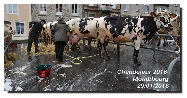 Montebourg, Ma Chandeleur 2016 (4/4)