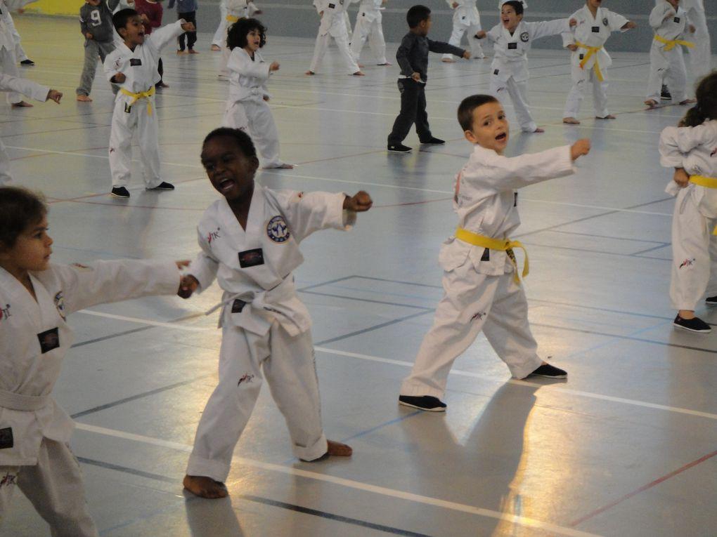 On verra enfin du taekwondo en compétition et de la savate ce week-end  à Vénissieux