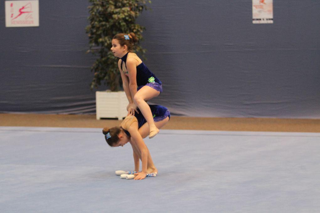 Très joli spectacle proposé par la gymnastique rythmique des clubs d'Auvergne et Rhône-Alpes