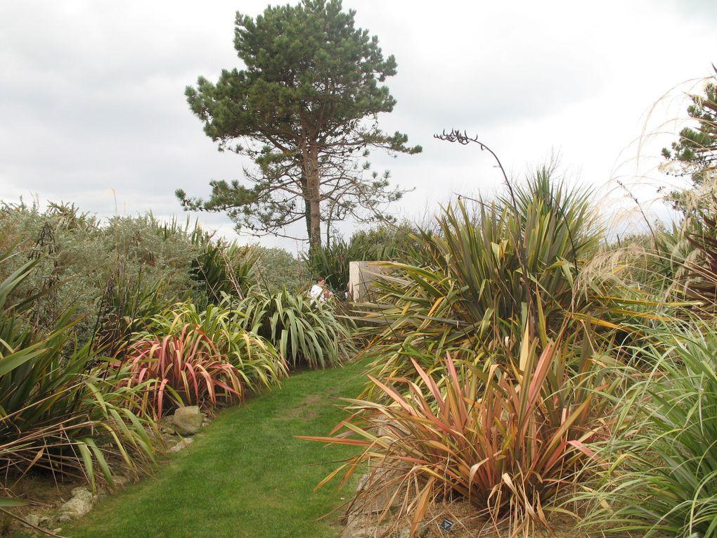 Jardin de l'île de Batz - Bretagne