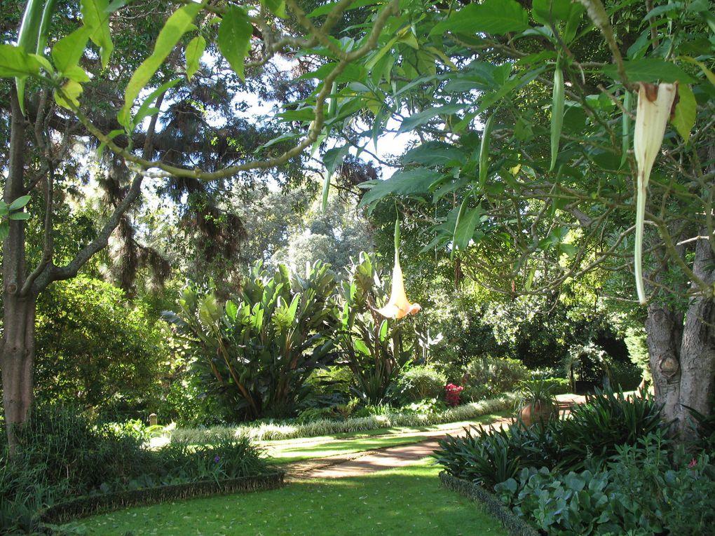Palheiro Garden – Madère