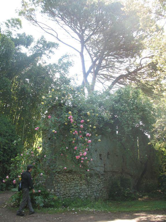 Ninfa Garden - 17 photos